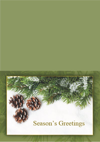Picture of Holiday Card Pine Cones